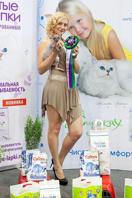 http://data20.gallery.ru/albums/gallery/210554-284de-57017676--u79508.jpg