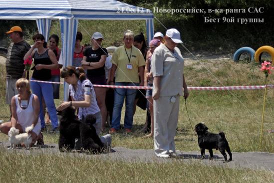 http://data20.gallery.ru/albums/gallery/211527-06ff2-56996541-m549x500-ued975.jpg