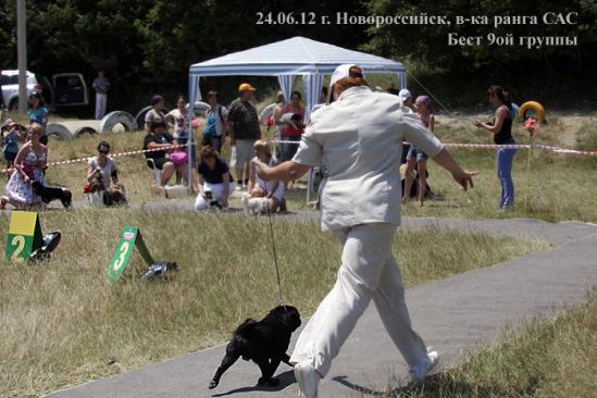 http://data20.gallery.ru/albums/gallery/211527-a6583-56996540-m549x500-u7ea6d.jpg