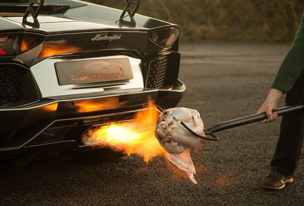 Как пожарить индейку при помощи атомобиля